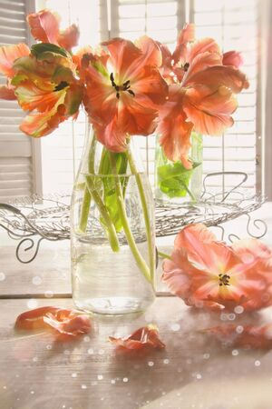 Colorful tulips on wooden table Фото со стока