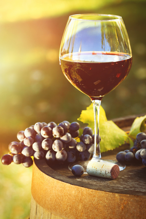 Closeup of glasse of red wine and grapes on barrel