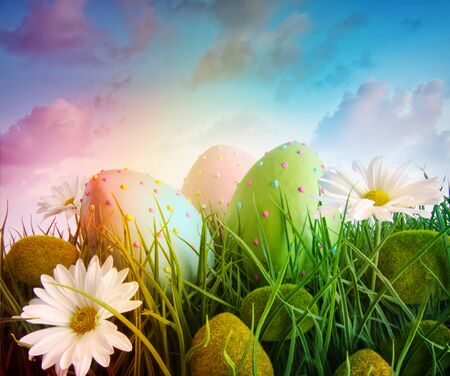 Large eggs with daisies in grass with rainbow  color sky