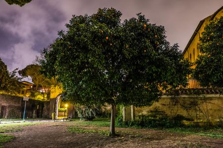 anochecer: Orange Park Árbol Aventino de Roma