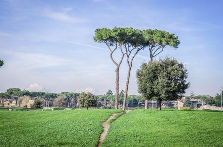 aqueduct: Italy, Rome, Claudio Aqueduct - A beautiful morning at Aqueduct Park