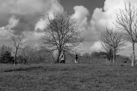 Italy, Rome, Villa Dora Pamphili - 06 March 2016: There walkers and runners in the park of Villa Doria Pamphili, here are some shots in black white