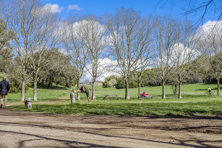 dora: Italy, Rome, Villa Dora Pamphili - 06 March 2016: Its morning in the park of Villa Doria Pamphili, the largest park in Rome; It is a place where you can walk, run, ride a bicycle and of course relax