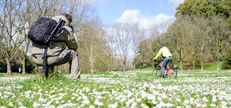 dora: Italy, Rome, Villa Dora Pamphili - 06 March 2016: Photographing among the daisies scattered throughout the park is a wonderful feeling Editorial