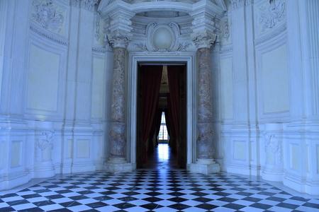 reale: Hallway of Venaria Reale, Italy Editorial