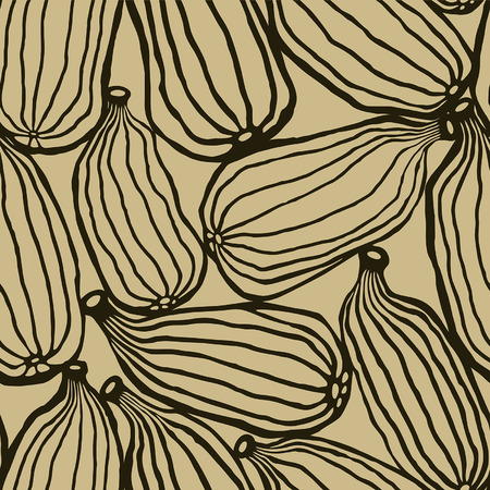 Cardamom | Sepia Illustration