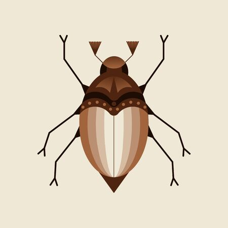 vector illustration of the may beetle, chafer