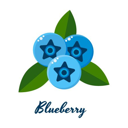 vector illustration of blueberries, blue berries with green leaves