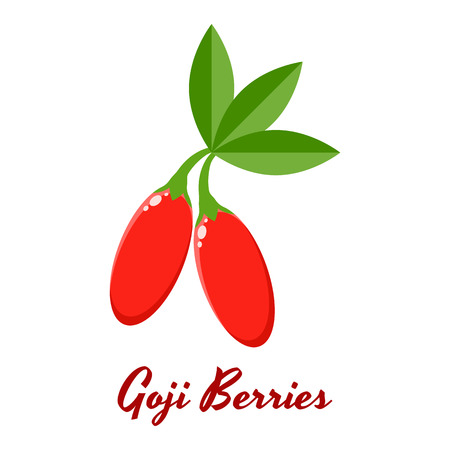vector illustration. red Goji berries with green leaves. Illustration