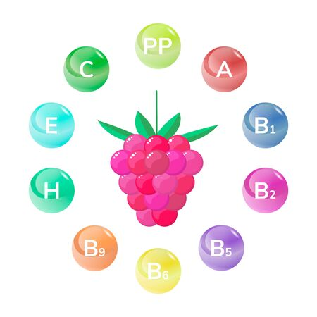 usefulness: vector illustration. Raspberry. Forest garden berries vitamins Illustration