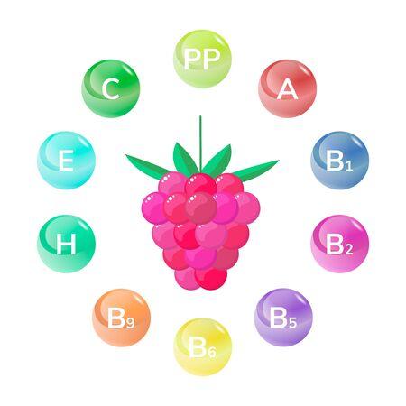 vector illustration. Raspberry. Forest garden berries vitamins Ilustrace