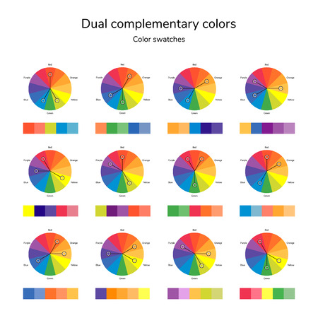 vector illustration of color circle, infographics, palette, dual complementary color, split complementary color, swatches