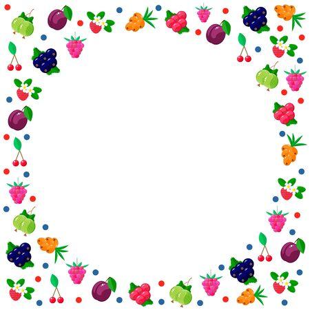 vector illustration. garden berries. Raspberries, gooseberries, currants plum sea buckthorn cherry