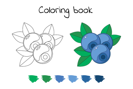 Coloring book for children with blueberries
