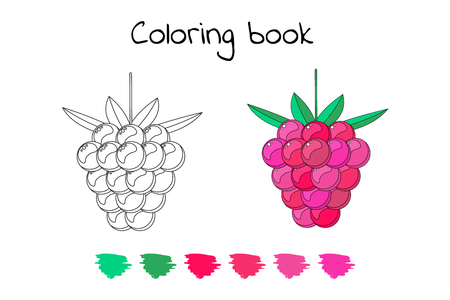 Coloring book for children with raspberry