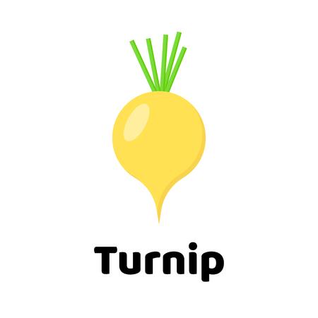 Vegetable Vector illustration. Turnip on white background Vettoriali