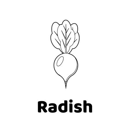 Vector illustration. Game for children. Vegetable. Coloring page radish