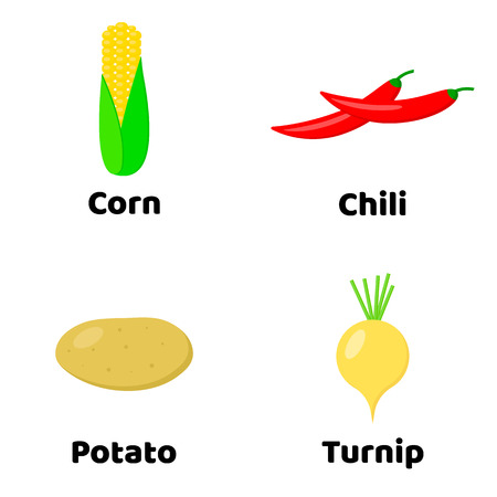 Vector illustration. Set of vegetables. corn, Potato, Chili pepper, Turnip Ilustração