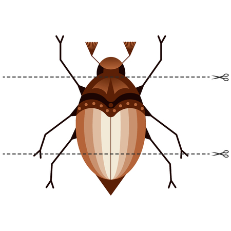 Vector illustration. A game for children of preschool age. Cut the picture into pieces. Fold in the right order. Mosaic. may beetle, chafer