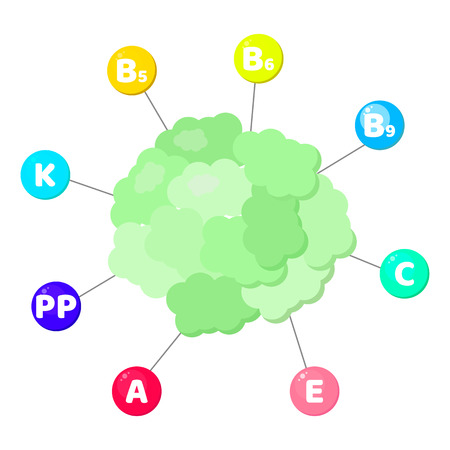 Vector illustration. Infographics. vitamins contained in vegetables. trace elements in colored circles. cauliflower