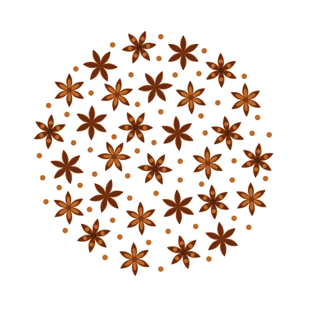 vector illustration. Spice. Star anise Badian. Round pattern