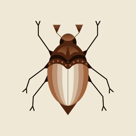 illustration of the may beetle, chafer