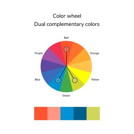 illustration of color circle, infographics, palette, dual complementary color, split complementary color