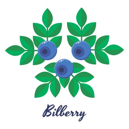 illustration, blueberries, bilberry, blue forest berries with green leaves