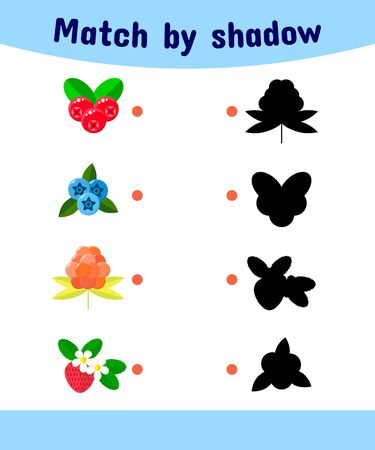 illustration. Matching game for children. Connect the shadow of the berries. cranberries, blueberries, cloudberries, strawberries Stock Photo