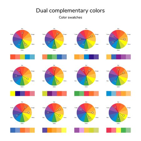 illustration of color circle, infographics, palette, dual complementary color, split complementary color, swatches