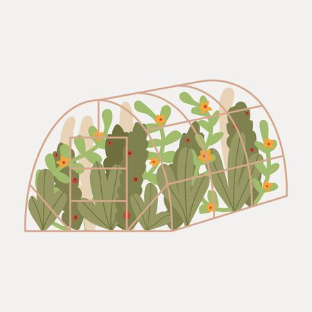 Cute hand drawn greenhouse. Garden. Leaves plants, flowers.