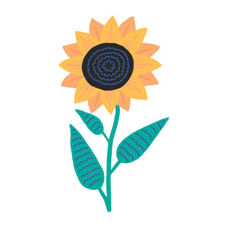 Vector illustration. Summer cute flower. Sunflower isolated on white background. 矢量图像