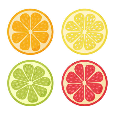 Lemon, orange, grapefruit, lime.Set hand drawn doodle citrus Vector illustration 矢量图像