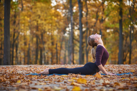 Beautiful young woman practices yoga asana upward facing dog on the wooden deck in the autumn park. Stock Photo