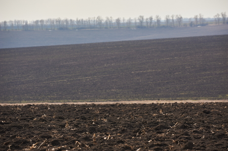 Ploughed field in spring. Hills and forest on horizon. Clear sky.