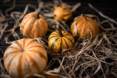 autumn background with pumpkins and dry leaves on wooden board. Stock fotó