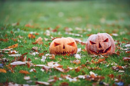 Two Halloween Pumpkins in the autumn park.