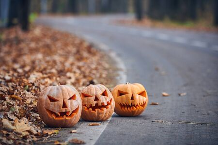 Three Halloween Pumpkins on the side of the road in the forest. Stock fotó