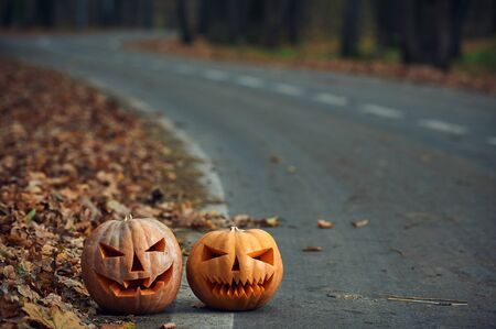 Two Halloween Pumpkins on the side of the road in the forest.