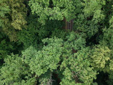 Aerial view with a drone of a railway in the green forest. Zdjęcie Seryjne