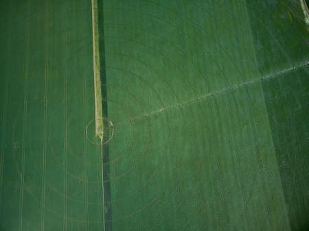 Center pivot irrigation system on a green field aerial drone view