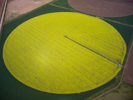 Center pivot irrigation system on a yellow rapeseed field aerial drone view