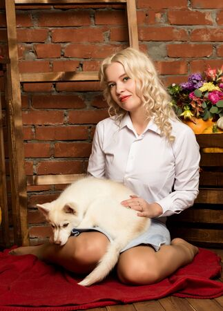 red carpet background: blonde woman with husky puppy on a autumn harvest background. Stock Photo