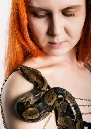 sexy redhead woman holding snake. close-up photo girl with pygmy python on a white background Standard-Bild