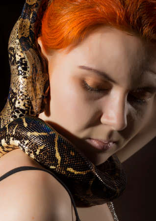 redhead woman holding snake. close-up photo girl with pygmy python on a white background Standard-Bild