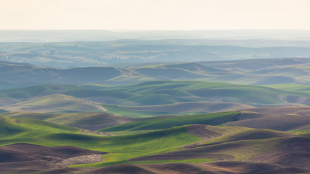Palouse Rolling Hills in Haze, Washington