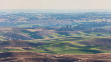 Rolling Hills from Steptoe Butte in Haze, Washington