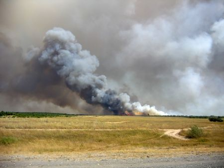 Forest fire in the Volgograd region in August 2006. Photo was taken with the route M4 at a distance 1-2 km.