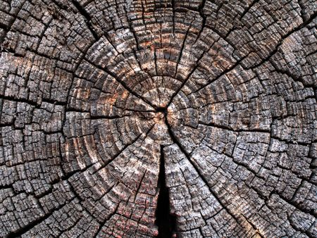 Texture saw cut the old timber. photo