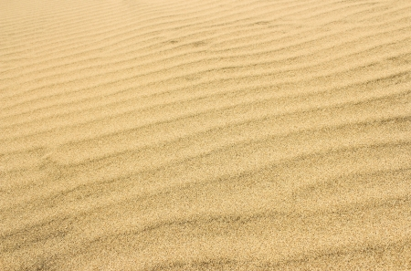 The surface of the sandy desert in the background.